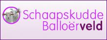Logo Balloerveld