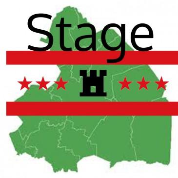 Stage (HBO) Provincie Drenthe